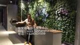 临沂锦泽海鲜酒店绿墙